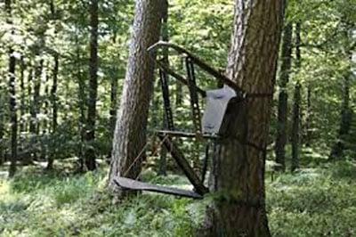 Mobiler Baumsitz