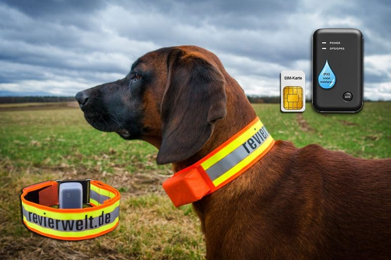 GPS-Ortungssysteme